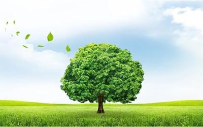 关注 四川省生态环境保护委员会成立