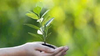 关注|四川省生态环境保护委员会成立